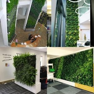 Vertical Green Walls